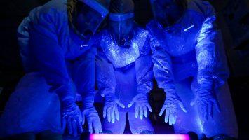 Timeline: Ebola 2014