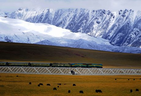 Qianzang Railway, the highest. Photo: By Jan Reurink,Wikimedia.