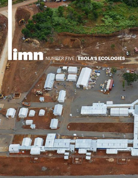 Ebola's Ecologies