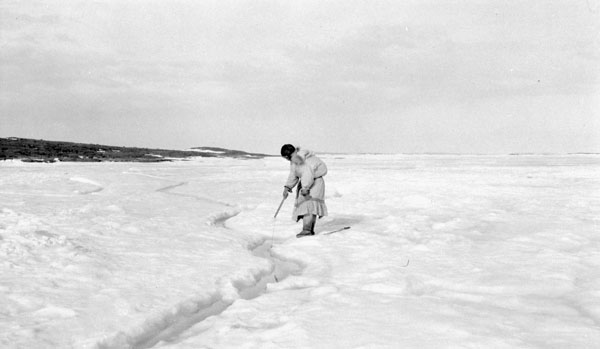 An Inuit woman with her baby on her back tries to hook a fish through a small tide crack, Coronation Gulf, Nunavut