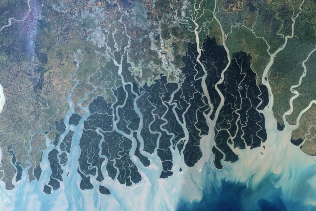 Figure 2. Landsat 7 Image of the Sundarbans, released by NASA Earth Observatory.
